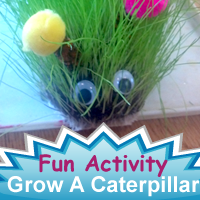 "A Green Growing Caterpillar Perfect ""Pet"" for School or Home."
