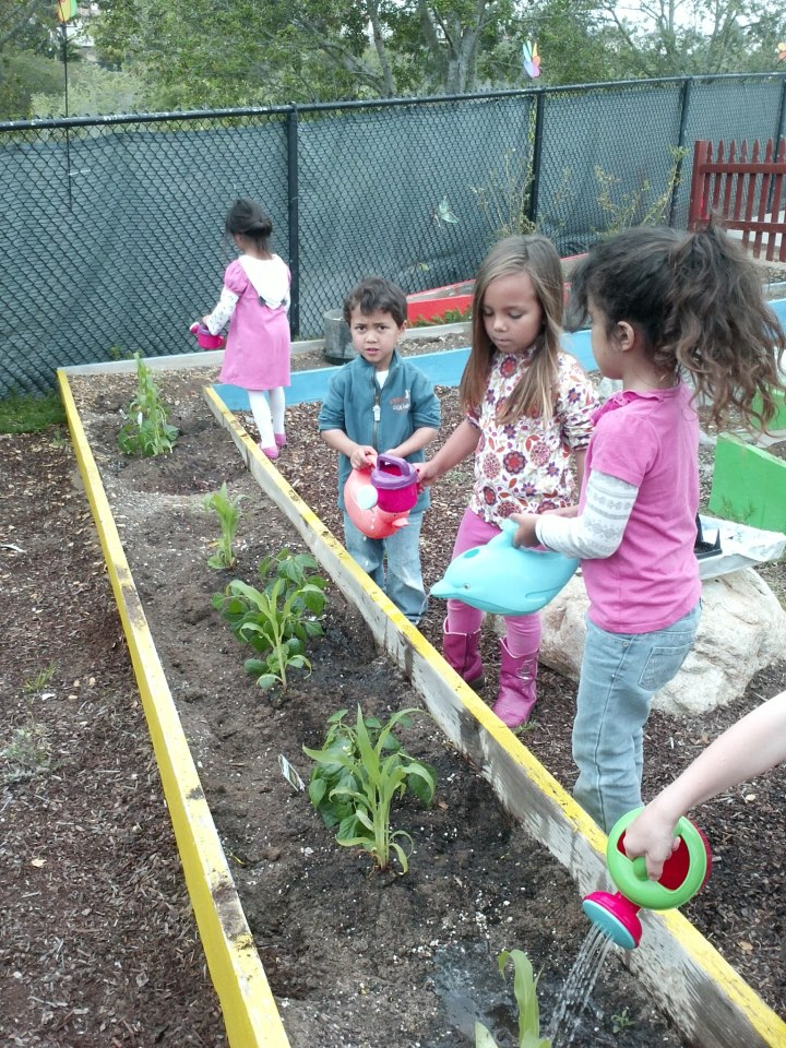Back to nature – kids learn about companion planting gardening