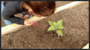 April 2015 Parent Student News and Activities